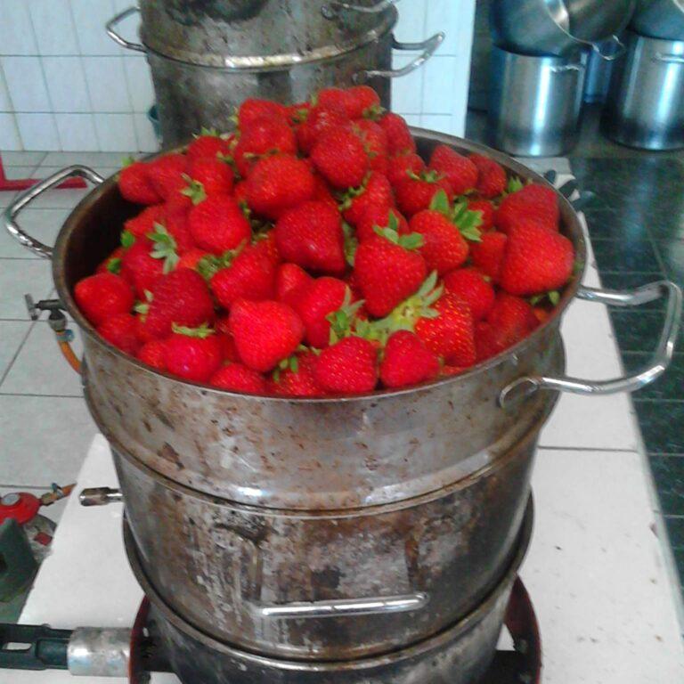 En gewoon nog meer aardbeien